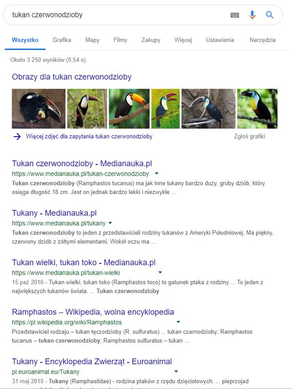 """Prezentacja wyników wyszukiwania frazy """"tukan"""" w wyszukiwarce Google."""